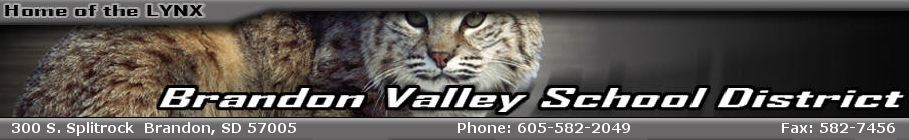 Brandon Valley School District 49-2